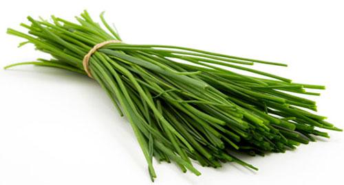 گیاهان-ادویه-ای-را-بهتر-بشناسیم-8